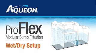 Aqueon | ProFlex - Modular Sump Filtration Wet/Dry Set Up Instructions