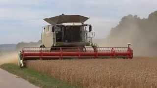 Getreideernte 2015