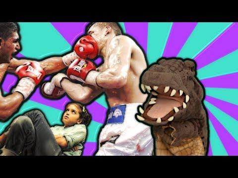 التمساح الحلقة ١٤: الطفشانية الملاكمية | Temsa7LY 1