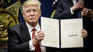 Libertarian Think Tank Proves That Trump's Travel Ban Won't Work