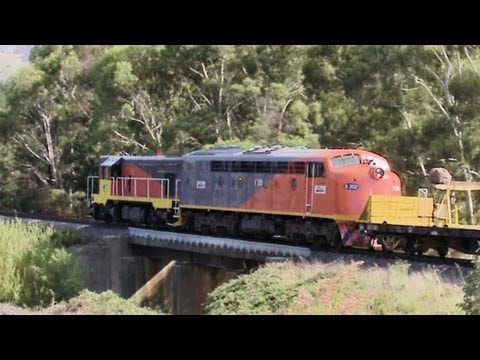 El Zorro T342 &amp; S302 with rail reclamation train - Australian EMD Diesel Locomotives - PoathTV