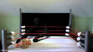 getlinkyoutube.com-WDWF Doll Wrestling World Show I December 2012 HD