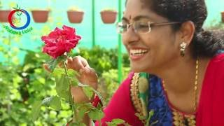 Terrace Gardening | Meet one of the most successful Kitchen Gardener | Sridevi