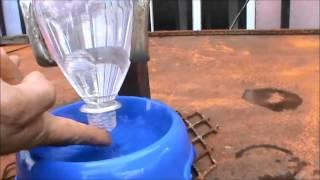 getlinkyoutube.com-Como hacer un dispensador de agua para cachorros pitbull