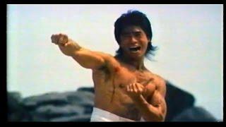 El Escuadrón de los Ninjas (Alexander Lo Rei)
