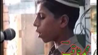PASHTU NAAT MUHAMMAD SAQIB,Uploaded by haji nowsherwan adil width=