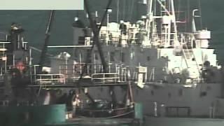 getlinkyoutube.com-尖閣上陸事件、ビデオ公開・海保=巡視船で挟み込み