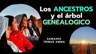 Sobre los Ancestros y arbol genealogico...