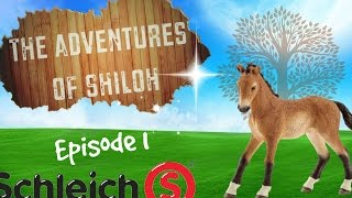 getlinkyoutube.com-The Adventures of Shiloh - Episode 1