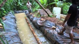 getlinkyoutube.com-Guadua- Taller en Puerto Rico- 2010 - Parte 1