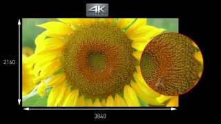 getlinkyoutube.com-Panasonic 4K Ultra HD Camcorder HC-X1000 - Produktvorstellung