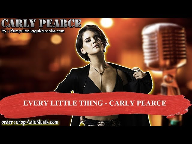 EVERY LITTLE THING  - CARLY PEARCE Karaoke