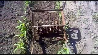 getlinkyoutube.com-Прополка кукурузы самодельным плоскорезом.