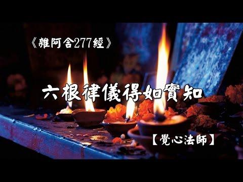 雜阿含277經-六根律儀得如實知【覺心法師】