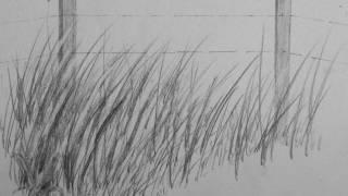 getlinkyoutube.com-How to Draw Realistic Tall Grass