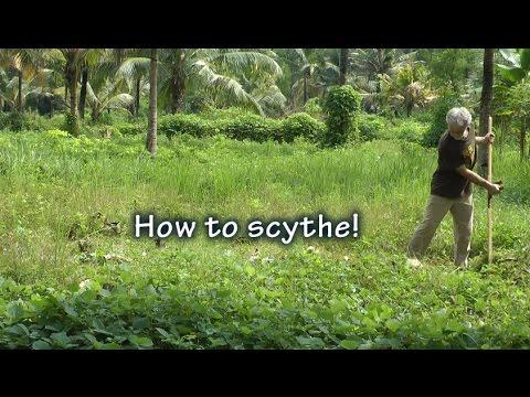 Scything - Sharpening & Honing the Scythe Blade! How to use a Scythe!