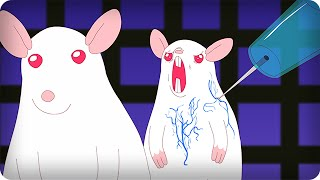 getlinkyoutube.com-SCIENTIFICALLY ACCURATE™ PINKY AND THE BRAIN
