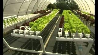 getlinkyoutube.com-Aquaponic Integrated Farming