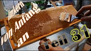 Imkern von Anfang an - Teil 31 - Honig entdeckeln, schleudern und sieben