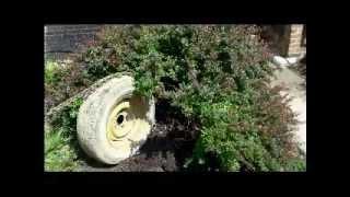 getlinkyoutube.com-Pulling a Bush Using Spare Tire