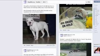 Dogsbite.org   Use Of A Year Of Facebook Posts