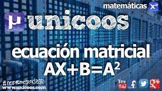 Imagen en miniatura para Ecuacion matricial 02