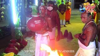 முள்ளியவளை காட்டாவிநாயகர் கோவில் பொங்கல் உற்சவம் 23.05.2021