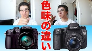 getlinkyoutube.com-色味の違いを見てみよう / Canon EOS 70D vs Panasonic GH4