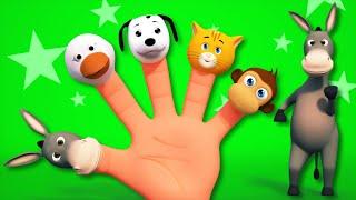 getlinkyoutube.com-Finger Family | Animal Sound Song | 3D Rhymes From Kids TV