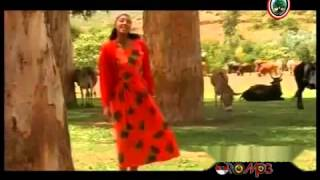 getlinkyoutube.com-Oromo Music - Hawwi Tezera - Walee yaa walee