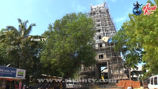 கீரிமலை நகுலாதேவி சமேத நகுலேஸ்வரர் ஆலயம் கொடியேற்றம் 11.02.2017