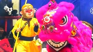 getlinkyoutube.com-2016 Monkey and Lion Dance Performance - Boston Chinatown Main Street Community & Competition Event