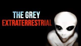 """The Grey Extraterrestrial"" Creepypasta"