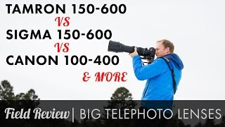 getlinkyoutube.com-Zoom Telephoto Field Review Tamron 150-600 vs Sigma Sport 150-600 vs Canon 100-400 & more HD