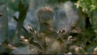 First scene of Arachnid (2001)