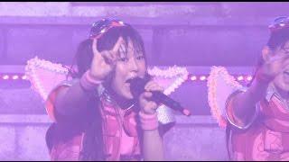 チームしゃちほこ - 抱きしめてアンセム(Live at 武道館) from しゃちサマ2014