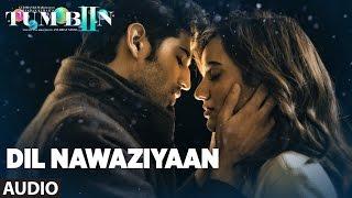 getlinkyoutube.com-DIL NAWAZIYAAN Full Song (Audio) | Arko, Payal Dev | Tum Bin 2