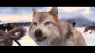 Twilight 5 : La Bataille Finale (HD)