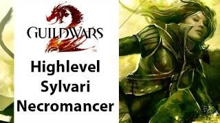 getlinkyoutube.com-► Guild Wars - Guild Wars 2 - High Level Sylvari Necromancer Gameplay - Part 1