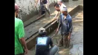 getlinkyoutube.com-Paimo, Ikan Raksasa Arwana (The Giant Fish of Arapaima) di Plosokuning Yogya on Original Version