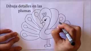 getlinkyoutube.com-Cómo dibujar un Pavo Real Dibuja Conmigo Dibujos de Animales