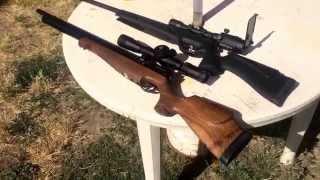 getlinkyoutube.com-.22 vs .177 (Air Gun Comparison)
