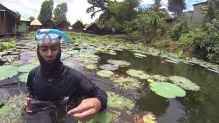 getlinkyoutube.com-ดำน้ำยิงปลาแม่น้ำแควใหญ่ฉายาลงน้ำแล้วต้องมีปลาติดมือ Spearfishing of the River Kwai