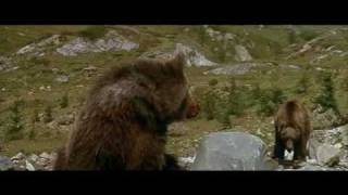 getlinkyoutube.com-L'Ours (1988) - the cougar scene