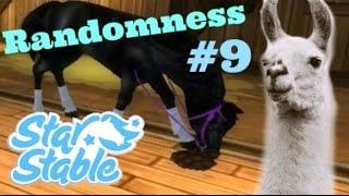 getlinkyoutube.com-Randomness #9 | Star Stable Online