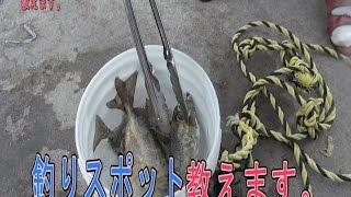 getlinkyoutube.com-釣りポイント教えます!【沖縄 うるま市東屋慶名 HY】