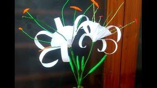 Paper Flowers Beach Spider Lily \ Hymenocallis (flower # 125)