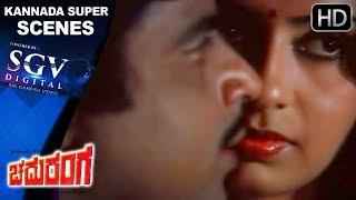 Kannada Scenes | Ambrish And Ambika Romantic Scenes | Chaduranga Kannada Movie | Vajramani