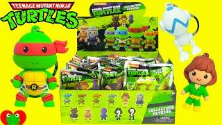 Teenage Mutant Ninja Turtles Collectors Keyrings