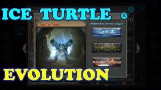 getlinkyoutube.com-Taichi Panda | Ice Turtle COMPLETE Evolution